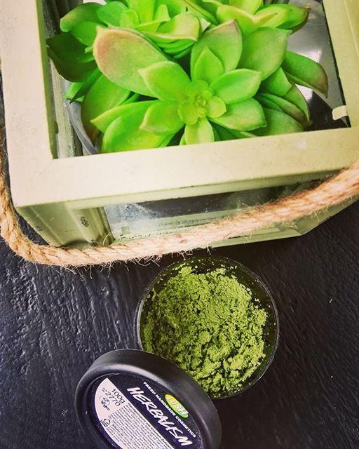 Herbalism_cleanser1.jpg